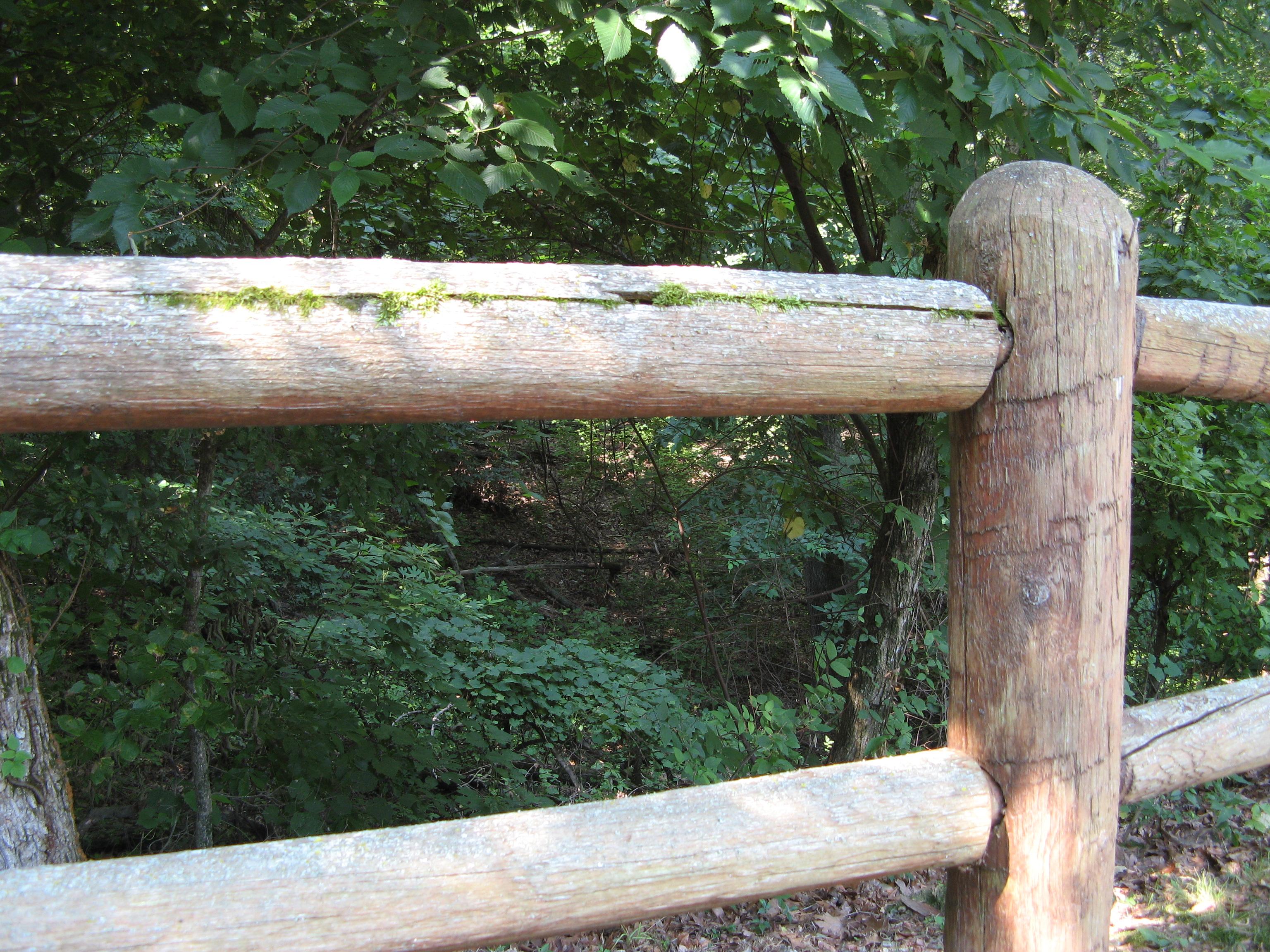 Fence Rail