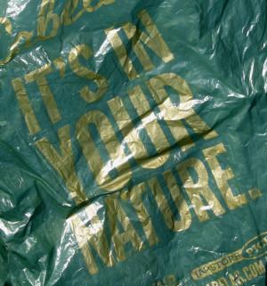 IMG_3183a Cabela bag