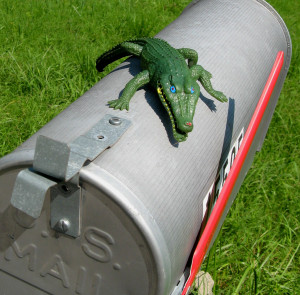 Toy alligator