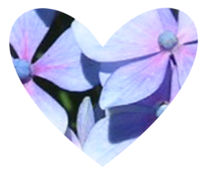 Heart shaped hydrangea design