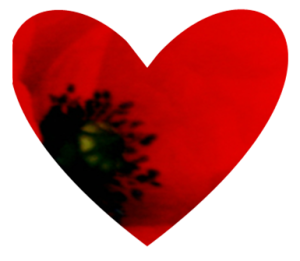 Heart shaped poppy design