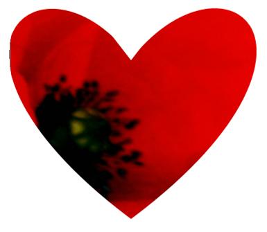 Heart shaped poppy design