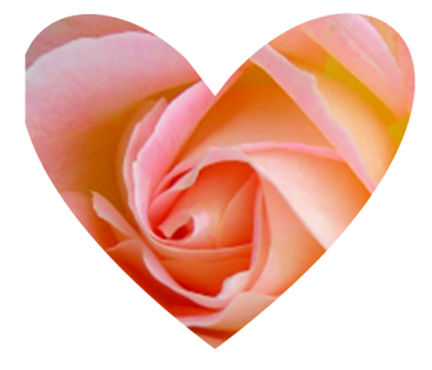 Heart shaped rose design