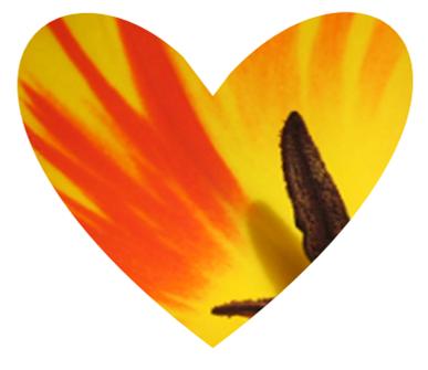 Heart shaped tulp design