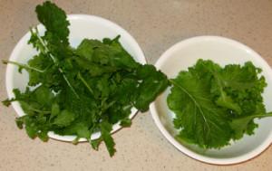 Bowls of Greens