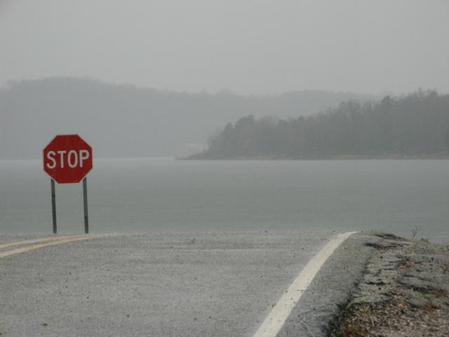 Gray lake scene