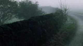 Misty rural path