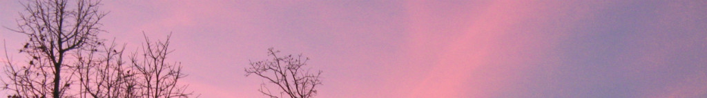 Pink and blue winter sky