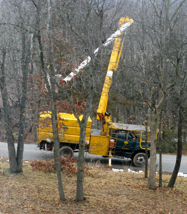 Tree trimmers on a country road