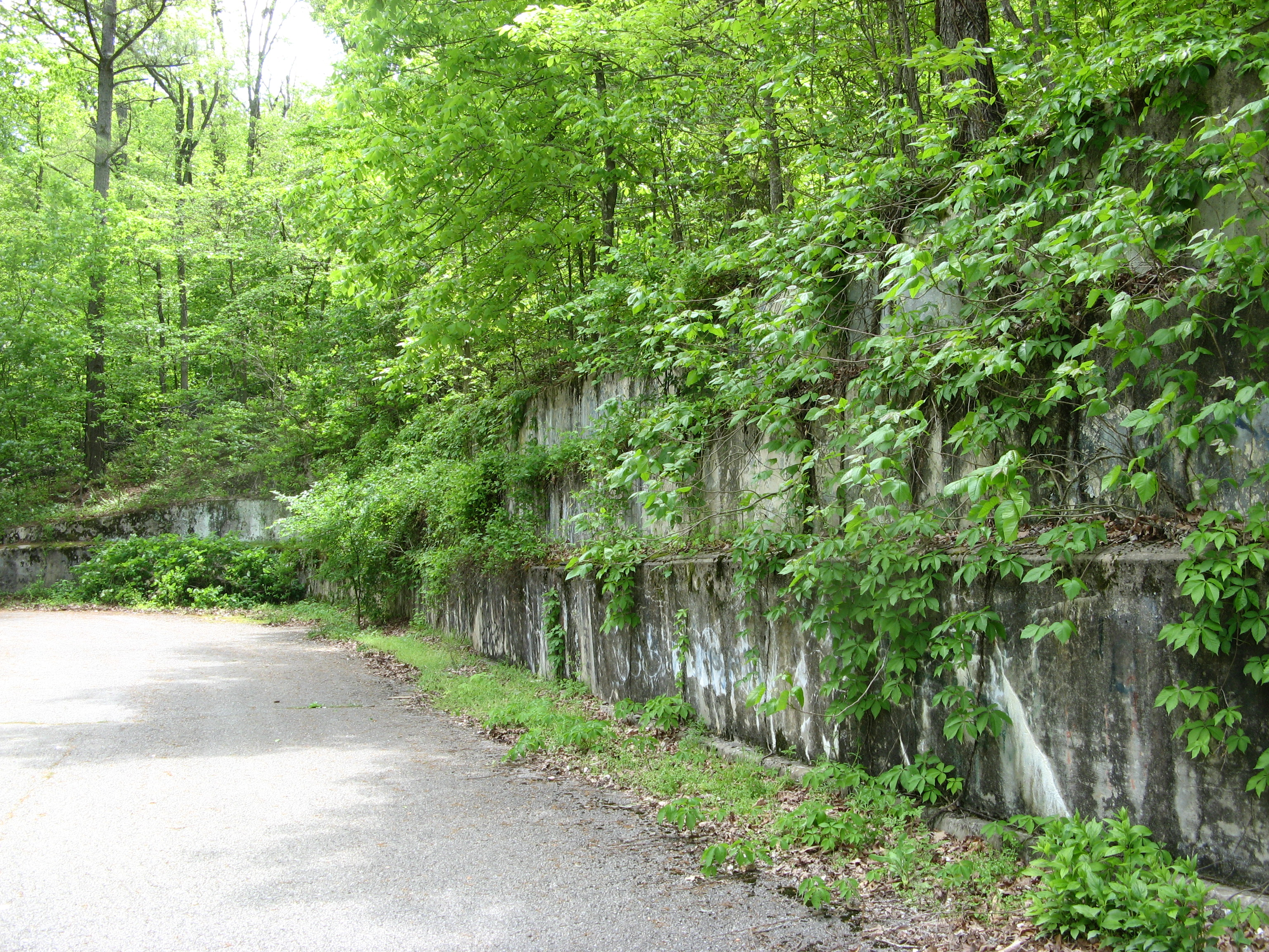 Retaining wall with greenery