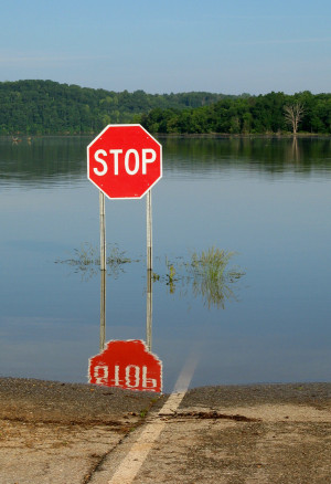 Stop sign partially submerged at lake